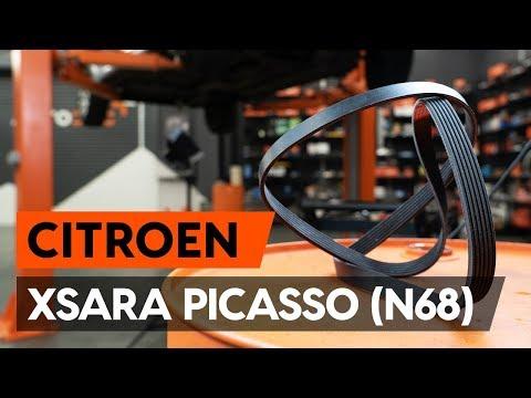 Как заменить поликлиновый ремень двигателя CITROEN XSARA PICASSO (N68) [ВИДЕОУРОК AUTODOC]