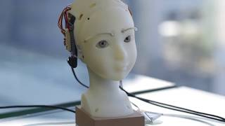 SEER: Simulative Emotional Expression Robot