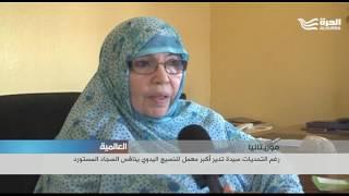 رغم التحديات سيدة تدير أكبر معمل للنسيج اليدوي ينافس السجاد المستورد  في موريتانيا