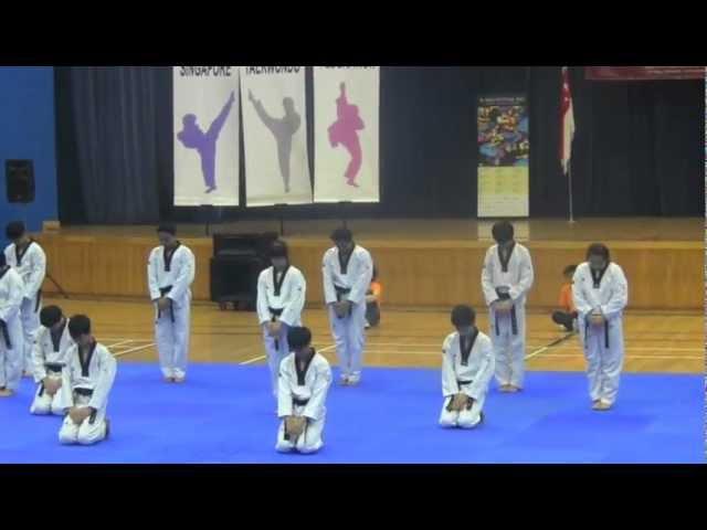 Taekwondo Spectacular 2011 (Demo)