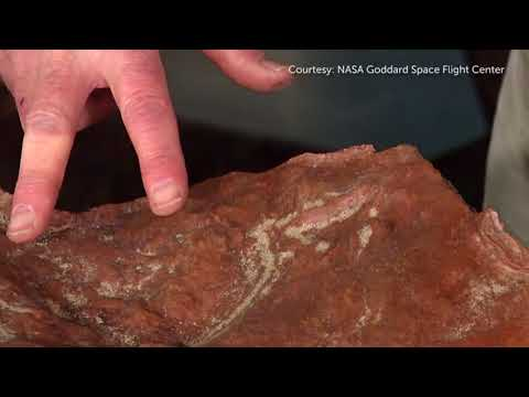Dinosaur tracks discovered at NASA's Goddard Space Flight Center