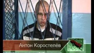 Интервью с Антоном Коростелевым