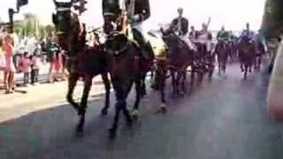 Sveriges Nationaldag 2008, kungen anländer