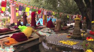 On the Path of the Buddha: Buddhist Pilgrimage in North India and Nepal