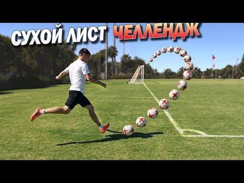 СУХОЙ ЛИСТ. Челлендж vs ПРОФИ