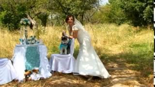 Хаски Атик и Кейси на нашей свадьбе 16 августа 2014(Отрывок свадебного видео с участием хаски Атика и Кейси., 2014-11-08T23:29:08.000Z)