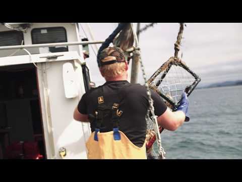 Life on the Water - Dungeness Crab Fishing