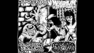 Alchemy Of Sickness - Black Box