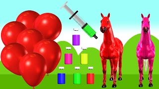 Colors for Children to Learn With Balloons Horse Injection | Colours Songs for Babies Toddlers