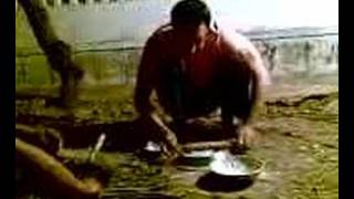 Babbu mann makeing dinner by. r.s. dhaliwal sweden