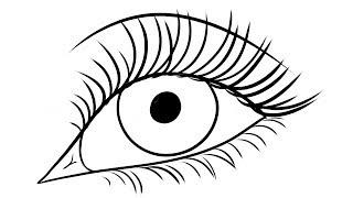 draw eyelashes drawing step eyes eye easy anime dragoart getdrawings beginners steps easily clipartmag