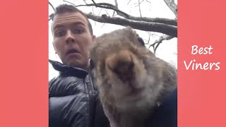 JEROME JARRE Squirrel Vine compilation - Best Viners Video