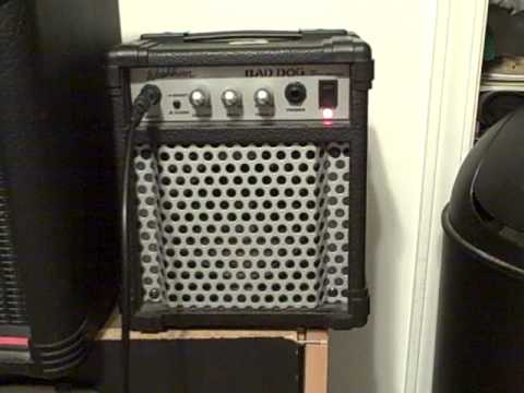 Washburn Bad Dog Amplifier Review  YouTube