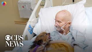 A Vietnam War vet and his dog have an unbreakable bond