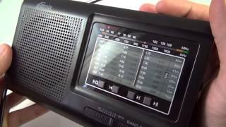 Радиоприёмник Ritmix RPR 4000 - обзор