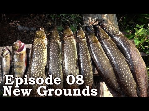 Beyond Survival | The Wilderness Living Challenge 2016 S01E08 - NEW GROUNDS