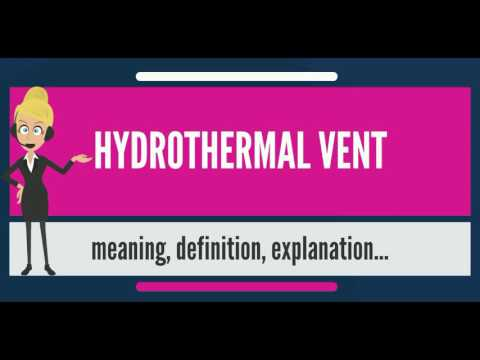 What is HYDROTHERMAL VENT? What does HYDROTHERMAL VENT mean? HYDROTHERMAL VENT meaning