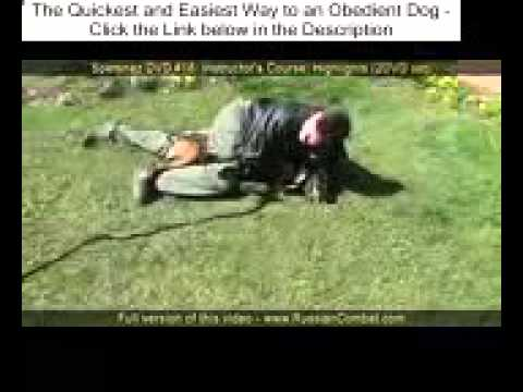 how to defend from a dog