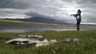 Рыбалка в Монголии, счастливые кадры