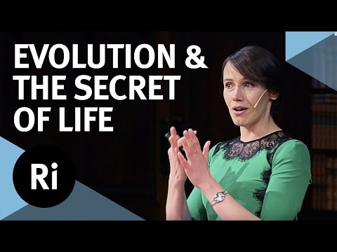 Copy number variation and the secret of life - with Aoife Mc