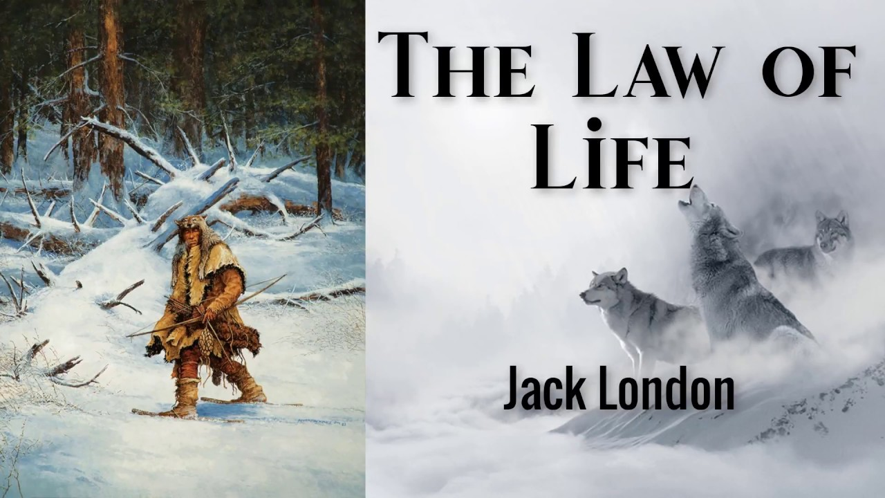 the law of life describe the conditions of life for the tribe