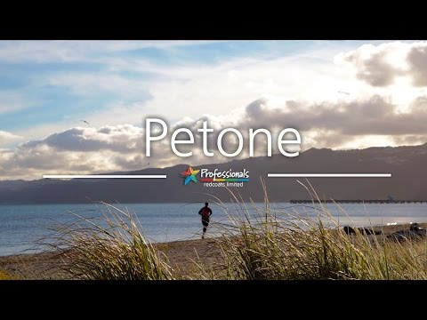 Petone, Lower Hutt  - Professionals