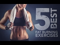 5 Best Fat Burning Exercises (TRY THIS ON YOUR LUNCH BREAK!!)