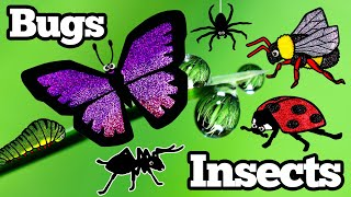 Bug Names For Kids, Insects Learn Names and Sounds | Wrong Puzzle Animation Learning For Children
