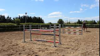 Circolo Ippico la Sella - Maneggio cavalli e scuola di equitazione Foggia