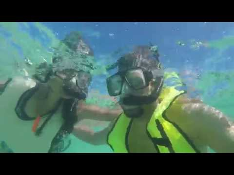 A snorkeling day trip to Dry Tortugas National Park from Key West, Florida