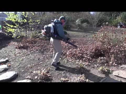 A Simple Tip For Fall Leaf Cleanup - Leaf Shredding