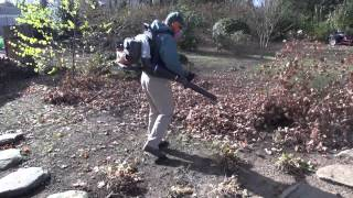 A Simple Tip for Fall Leaf Cleanup - Leaf Shredding