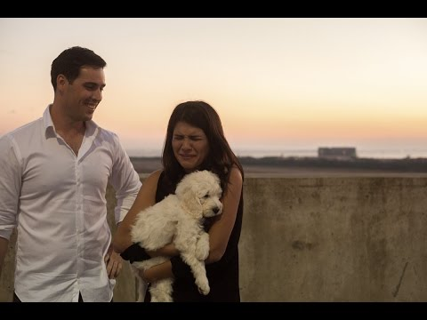 Cutest Surprise Puppy Proposal EVER.