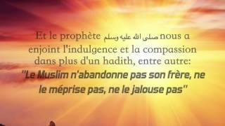 Ayez de la sagesse entre vous - Sheikh Rabi