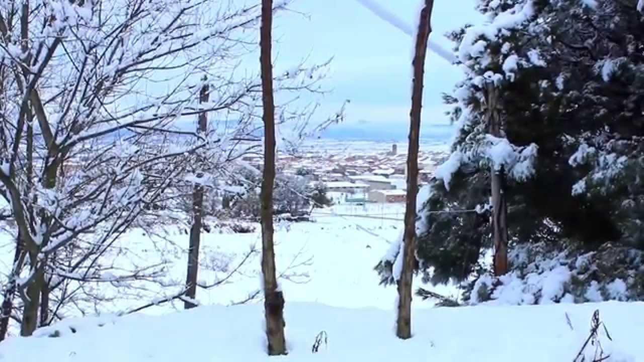Almacelles sota la neu 2015