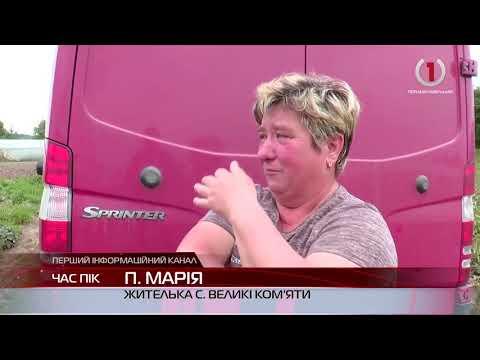 Життя на межі аграрії Виноградівщини підраховують мільйонні збитки