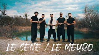 ALI KAYIR - LE CENE / LE MEYRO                           [Official Kurdish Music Video] Resimi