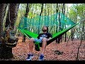 Peaceful day: tested my new hammock and I installed a birdhouse in the forest