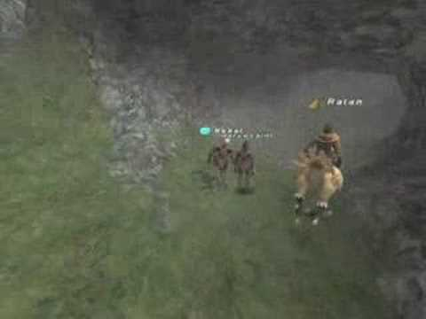 FFXI Eco-Warrior