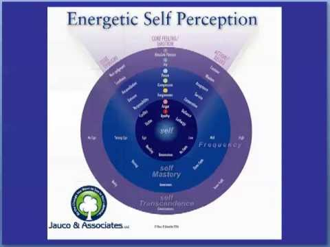 Energy Leadership - Discover 7 Choices That Will Help You Create Your Ideal Life