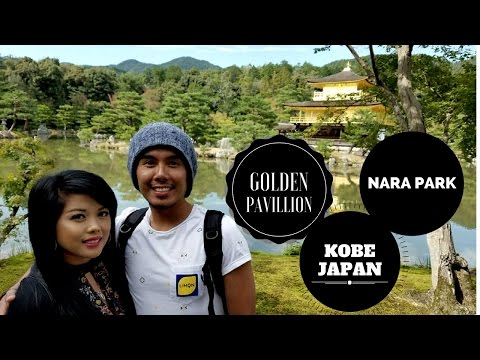 GOLDEN PAVILLION, NARA PARK, & KOBE JAPAN from Osaka (Viator)