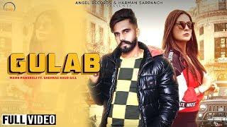 Gulab Maan Pandrali Free MP3 Song Download 320 Kbps