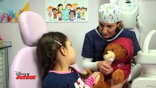 Dottoressa Peluche - La Scuola di Medicina - Il Dentista