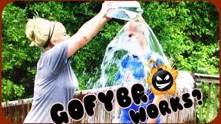 Gofybr Brutally Tested