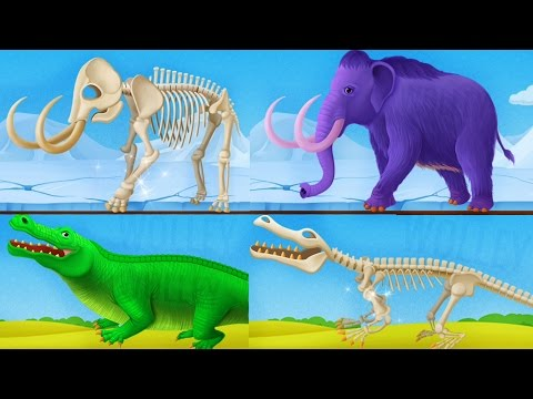 Thumbnail: Children Learn About Dinosaurs - Dinosaur Park 2 Kids Games - Educational Videos Games for Children