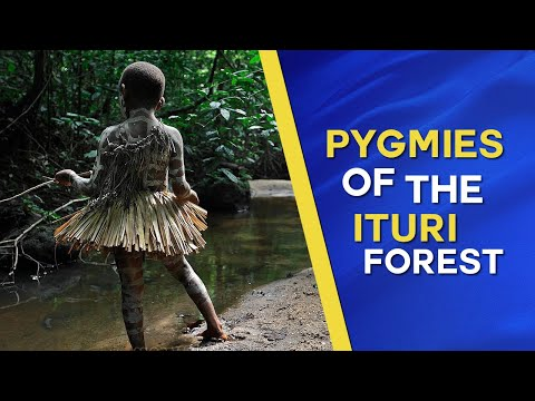 Pygmies of the Ituri rainforest - documentary about the Mbuti People of Congo Zaire (1975)