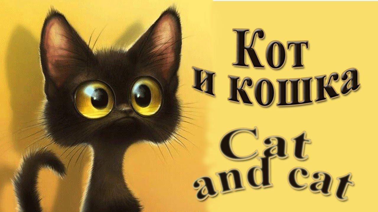 Все сиськи у кошек