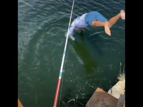 Jumps in the Water to Catch Huge Fish