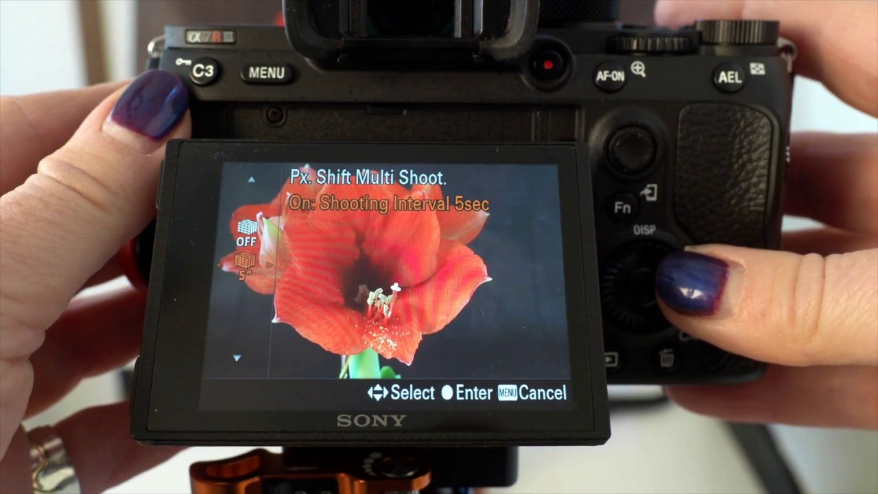 Guide to Sony A7R III Pixel Shift Multi Shooting mode