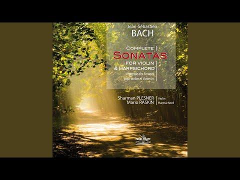 6 Violin Sonatas, Sonata No. 6 for Harpsichord and Violin in G Major, BWV 1019: I. Vivace